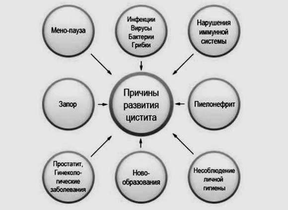 lechenie-czistita-foto-6