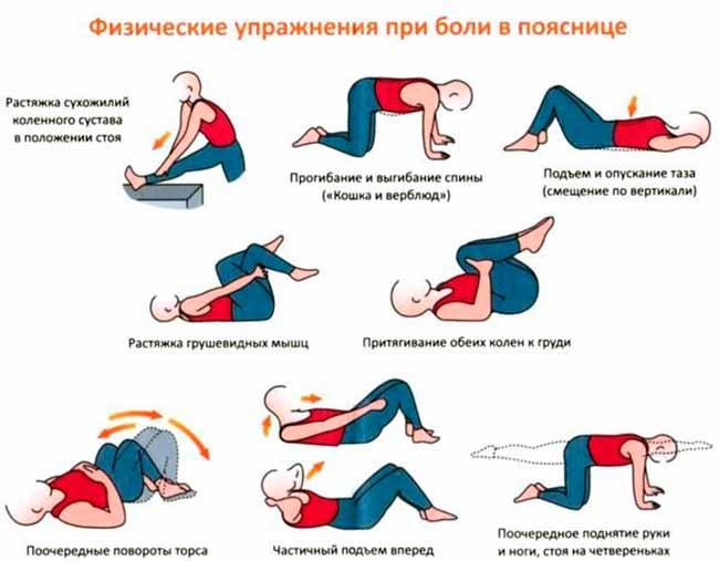 bol-v-spine-u-dashnika-foto-6