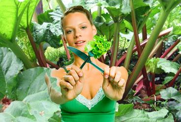 Dieta-na-zeleni-foto-3