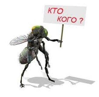 kak-izbavitsya-ot-komarov-foto-2