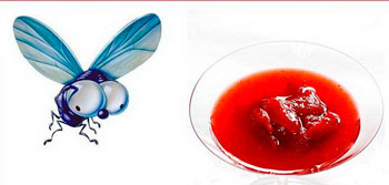 nadeznaja-zachita-ot-komarov-i-muh-foto-2