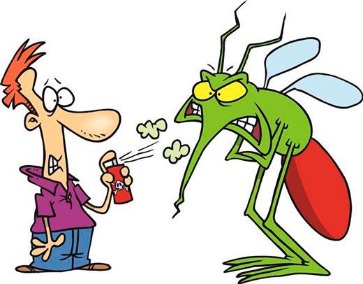 nadeznaja-zachita-ot-komarov-i-muh-foto-5
