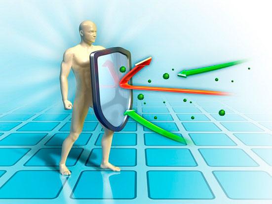 immunitet-i-ne-zdorovii-privihki-foto-1